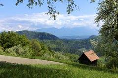 Ansicht der Alpen Stockbilder