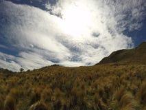 Ansicht der Berge in Capilla Del Monte, CÃ-³ rdoba, Argentinien am See Los Alazanes Lizenzfreie Stockbilder