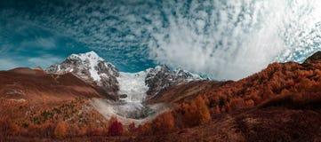 Ansicht der Berge und des Gletschers auf dem Hintergrund des blauen Himmels mit weißen Wolken und des Waldes im Vordergrund Lizenzfreie Stockbilder