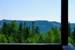 Ansicht der Berge und des Waldes Stockbild