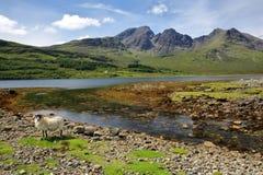 Ansicht der Blabheim-Bergroten Cuillin-Hügel hinter Loch Slapin nahe Torrin, Insel von Skye, Hochländer, Schottland, Großbritanni Lizenzfreies Stockfoto
