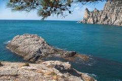 Ansicht der Bucht, der Klippen und des blauen Meeres Rocky Cove mit Fichtenzweigen im Vordergrund, ertrunken in den Wasserfelsen  Lizenzfreies Stockbild