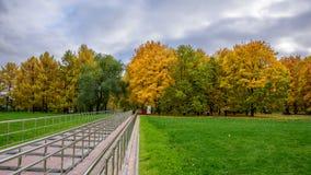 Ansicht der bunten Gasse mit Herbstbäumen, des grünen Rasens mit trockenem Herbstlaub auf ihr, des Treppenhauses mit Handläufen u Stockfoto