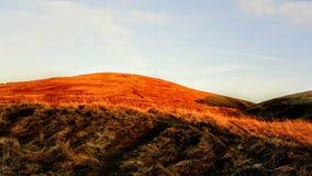 Ansicht der Campsies-Hügel Stockfotos