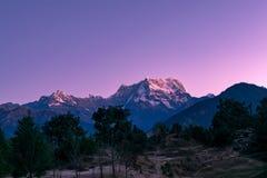 Ansicht der Dämmerung auf Chaukhamba-Spitzen von Garhwal-Himalaja von uttrakhand von Campingplatz Deoria Tal Stockbilder