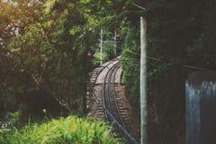 Ansicht der Eisenbahn im Dschungel von Rio de Janeiro stockbilder