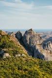 Ansicht der enormen sandigen Klippe mit Büschen Stockfoto