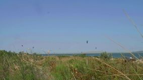 Ansicht der Förde und der Drachen des grünen Grases über ihr stock footage