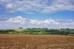 Ansicht der Felder und der Wiesen Stockfotos