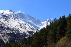 Ansicht der Flussschlucht und des Berges Tsitsa Oshten Stockfoto