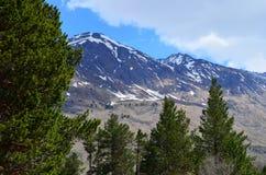 Ansicht der Flussschlucht und des Berges Tsitsa Oshten Stockbild