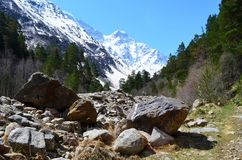 Ansicht der Flussschlucht und des Berges Tsitsa Oshten Lizenzfreie Stockbilder