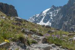 Ansicht der Gebirgslandschaft und der Landschaft in Nationalpark Ala Archa, ein populärer wandernder Bestimmungsort nahe Bischkek lizenzfreie stockfotografie