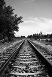 Ansicht der geraden Eisenbahn mit Baum an der Seite der Eisenbahn, Schwarzweiss-Farbbildart, selektiver Fokus Stockfotos