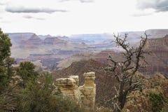 Ansicht an der Grand Canyon -Landschaft mit Gewitter Stockbilder