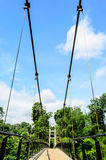 Ansicht der Hängebrücke Lizenzfreie Stockfotografie
