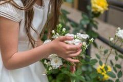 Ansicht der Hand eines Mädchens, das sorgfältig weiße Blumen berührt lizenzfreies stockbild