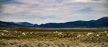 Ansicht der Hunewill-Ranch nahe Bridgeport, Kalifornien im Spätfrühling stockbild