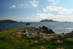 Ansicht der Küste von Blasket-Inseln von der Dingle-Halbinsel von der Weide Lizenzfreie Stockbilder