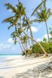 Ansicht der Küste von irufushi Insel, Malediven Lizenzfreie Stockfotos