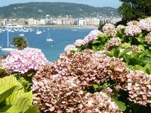 Ansicht der Küstenstadt und -Blütenpflanzen Lizenzfreies Stockfoto