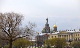 Ansicht der Kathedrale die Kirche des Retters auf verschüttetem Blut vom Feld von Mars (St Petersburg, Russland) Stockfotos