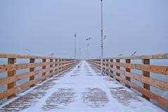 Ansicht der längsten Brücke im Winter Lizenzfreie Stockbilder