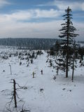 Ansicht der Landschaft im Winter stockbilder