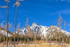 Ansicht der Landschaft mit schneebedeckten Bergen stockfotografie