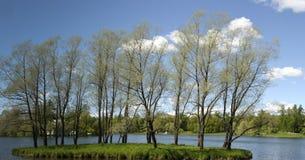 Ansicht der Landschaft mit See und Bäumen stockbild