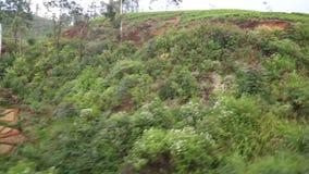 Ansicht der Landschaft von beweglichem Zug vom Fenster eines Passagiers an Bord stock video footage
