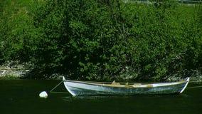 Ansicht der leeren hölzernen Bootswelle auf Wasser von Fluss Grüne Bäume am sonnigen Tag Küste Sommers niemand stock video footage