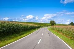 Ansicht der leeren Straße mit Getreidefeld und Bäumen Stockfotos