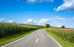 Ansicht der leeren Straße mit Getreidefeld und Bäumen Lizenzfreie Stockfotos