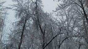 Ansicht der Locke mit Schneefällen Lizenzfreie Stockfotos