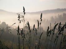 Ansicht der nebelhaften Nebelberge Stockfotos
