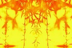 Ansicht der Niederlassungen der roten Weide sich entwickelnd im Wind auf einem gelben Hintergrund stockfotografie