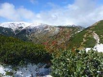 Ansicht der niedrigen Tatras-Kante mit dem ersten Schnee, niedriger Nationalpark Tatras, Slowakei lizenzfreie stockbilder