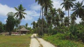 Ansicht der Palmen und der kleinen Hütte auf exotischer Insel, La Digue, Seychellen 2 stock video