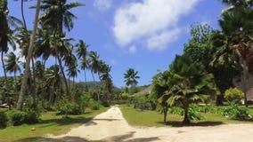 Ansicht der Palmen und der kleinen Hütte auf exotischer Insel, La Digue, Seychellen stock footage