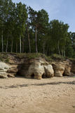 Ansicht der Sandsteinklippe nahe Ostsee, Vidzeme, Lettland Lizenzfreie Stockbilder