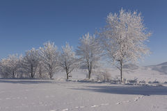 Ansicht der schneebedeckten Landschaft Stockfoto