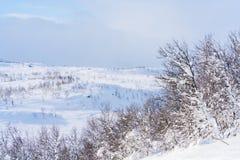 Ansicht der schneebedeckten Landschaft in Beitostolen Stockfotografie