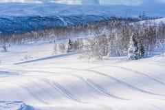 Ansicht der schneebedeckten Landschaft in Beitostolen Stockbilder