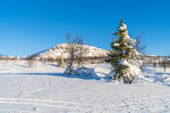 Ansicht der schneebedeckten Landschaft in Beitostolen Lizenzfreies Stockbild