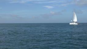 Ansicht der Segeljacht mit weißem Segel im Meer stock video