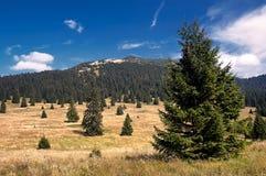 Ansicht der slowakischen Berge Lizenzfreies Stockbild