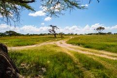 Ansicht der Spuren und der Savanne Samburu-Parks stockfoto