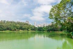 Ansicht der Stadtwolkenkratzer vom Aclimacao-Park Stockfotos