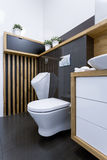 Ansicht der Toilette Lizenzfreies Stockfoto